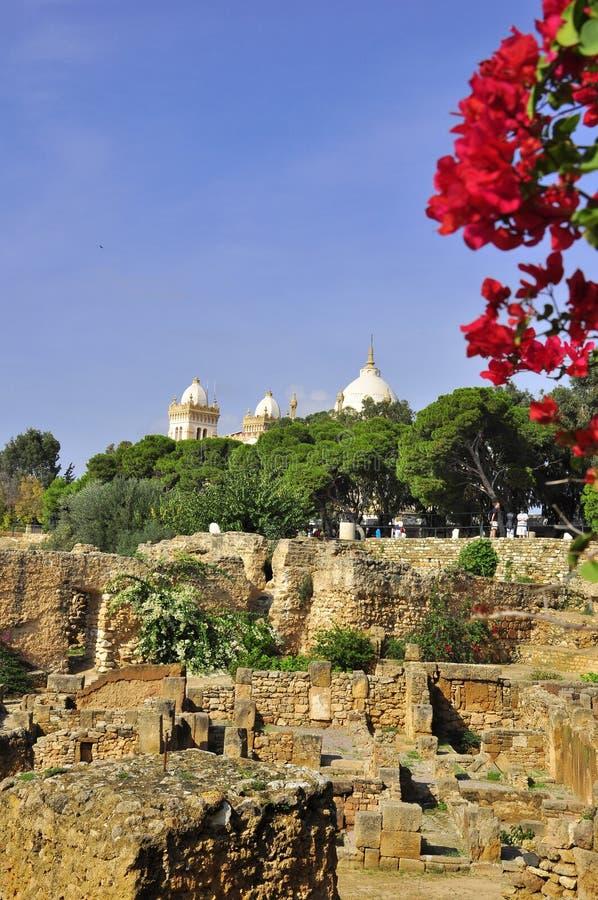 Carthage arruina Túnez foto de archivo libre de regalías