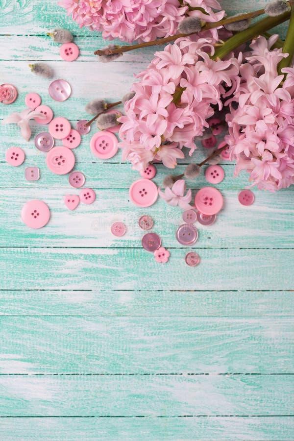 Cartolina con i giacinti ed i fiori del salice ed i bottoni rosa sopra immagine stock