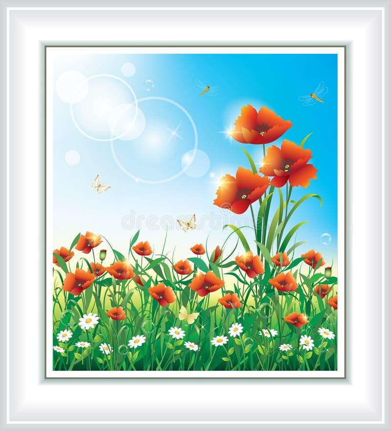 Cartolina d'auguri con i papaveri e la camomilla rossi illustrazione vettoriale