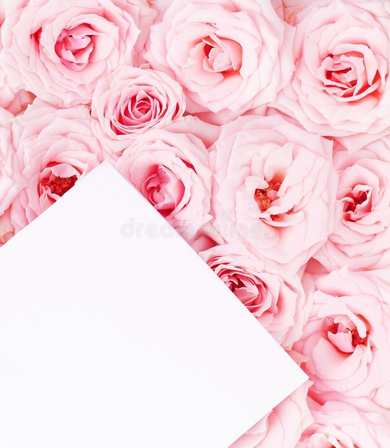Cartolina d'auguri con le rose fotografia stock libera da diritti