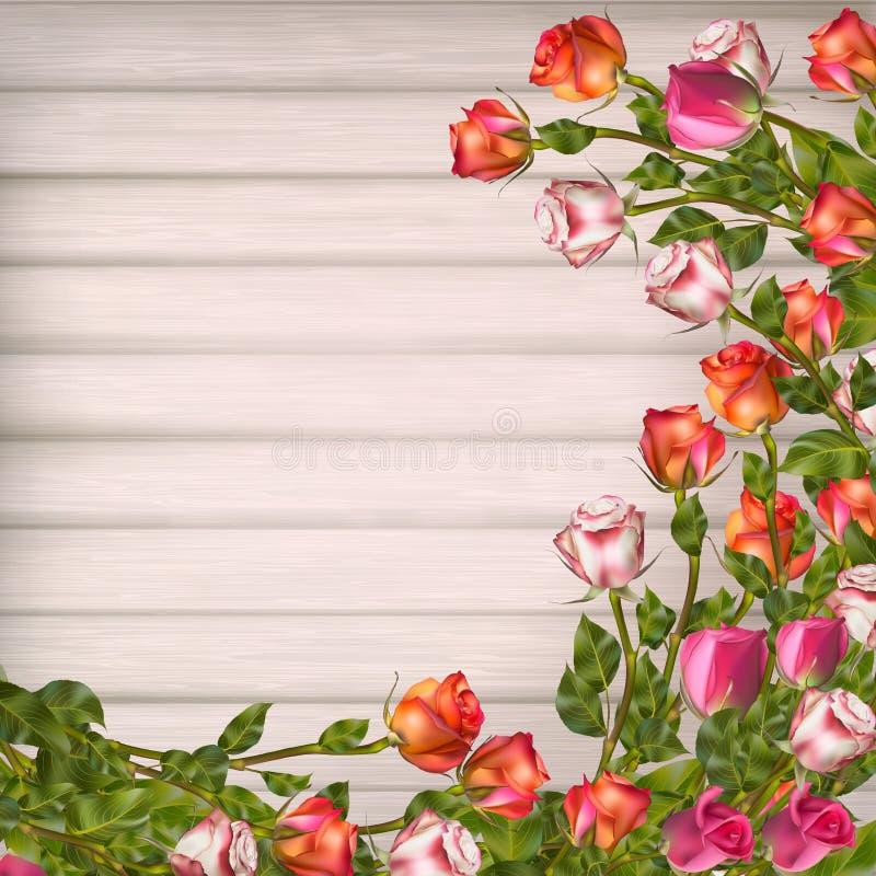 Download Cartolina D'auguri Con Le Rose ENV 10 Illustrazione Vettoriale - Illustrazione di bello, cartolina: 56892768