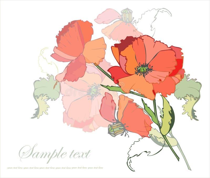 Cartolina d'auguri con un mazzo dei papaveri. illustrazione vettoriale