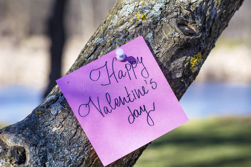 Cartolina d'auguri FELICE di rosa di giorno di biglietti di S. Valentino che appende su un albero fotografia stock libera da diritti