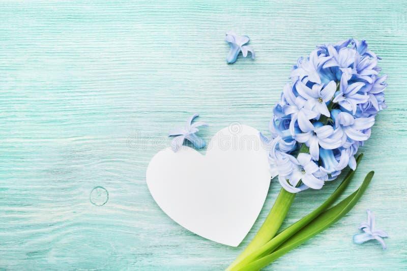 Cartolina d'auguri festiva della molla il giorno di madri con i fiori del giacinto e la vista superiore del cuore di legno bianco immagini stock libere da diritti