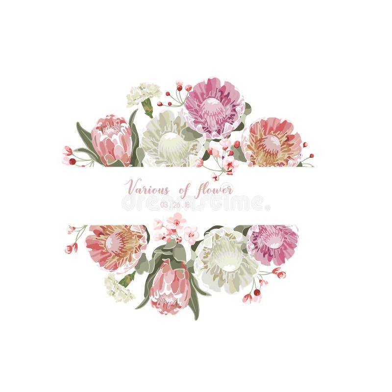 Cartolina d'auguri floreale d'annata e lussuosa di vettore con i fiori i illustrazione vettoriale
