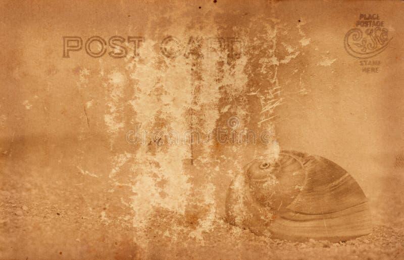 Cartolina dell'annata con le coperture del mare immagine stock libera da diritti