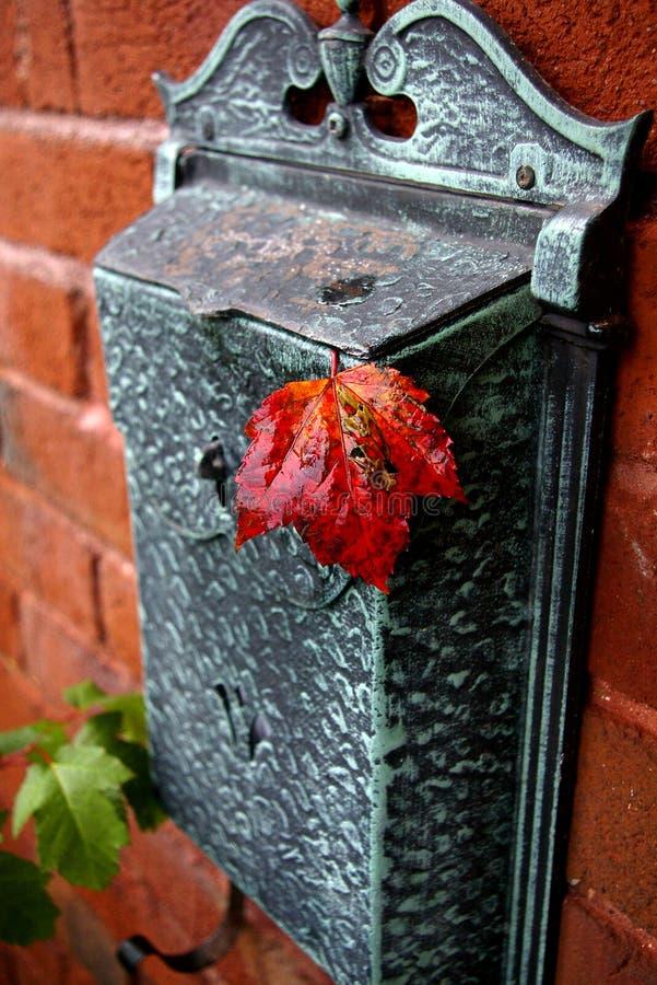 Cartolina di autunno fotografie stock libere da diritti