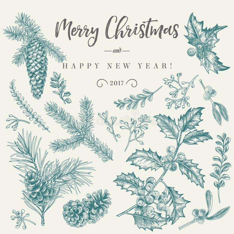 Cartolina di Natale con le piante tradizionali royalty illustrazione gratis