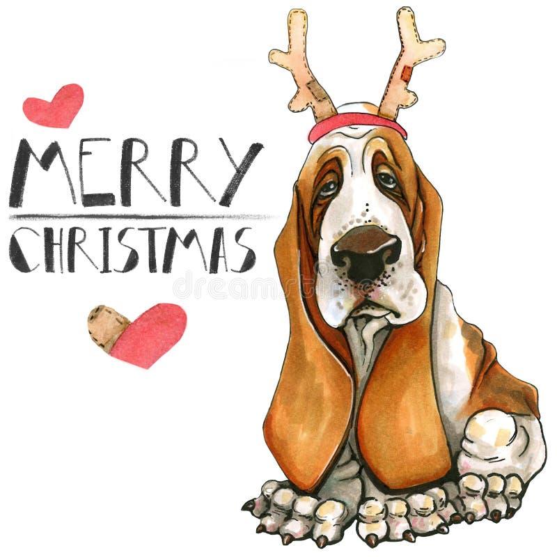 Cartolina di Natale con un cane della razza di basset hound Mary Christmas Isolato su priorità bassa bianca illustrazione di stock