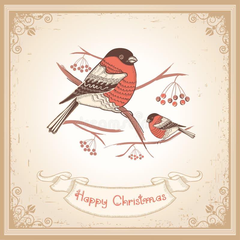 Cartolina di Natale d'annata con i ciuffolotti ed il rotolo illustrazione di stock