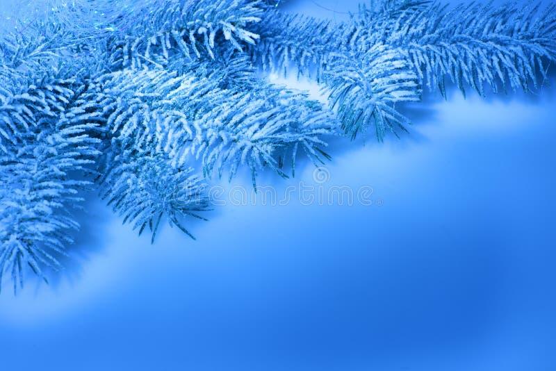 Cartolina di Natale, filiale nella neve immagini stock libere da diritti
