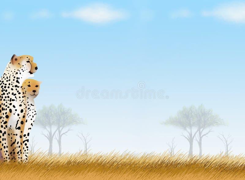 Cartolina e documento di nota dei ghepardi nella sosta di safari royalty illustrazione gratis