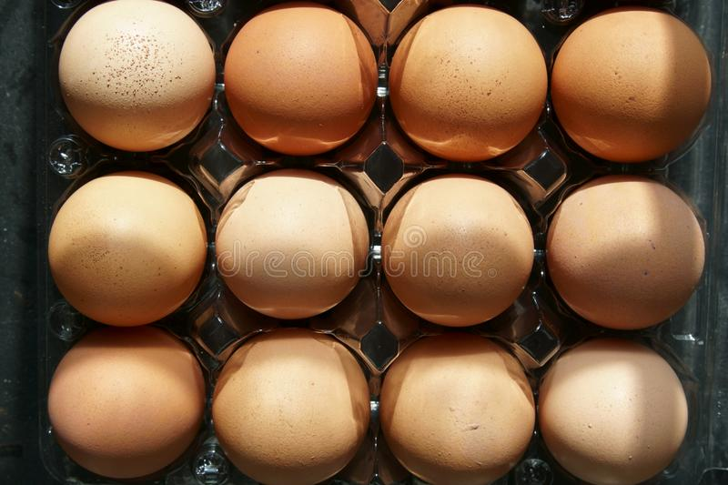 A carton of brown eggs. royalty free stock images