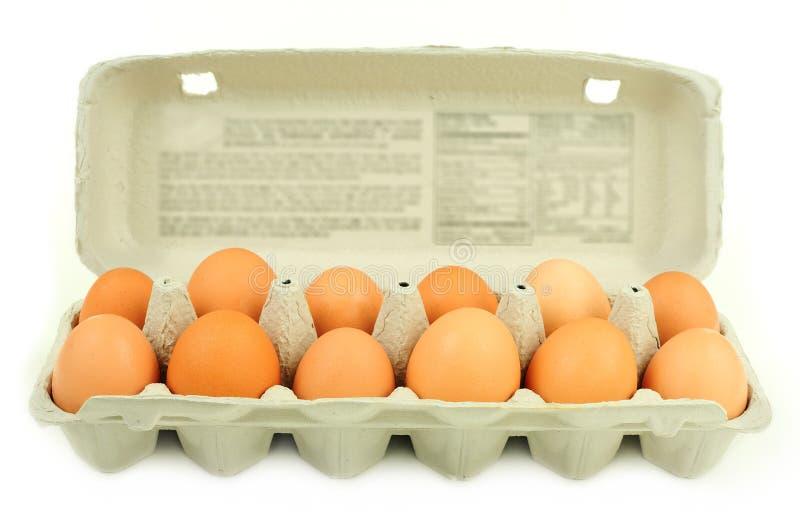 Carton of dozen brown eggs. Fresh brown country eggs packged in a dozen carton stock photography