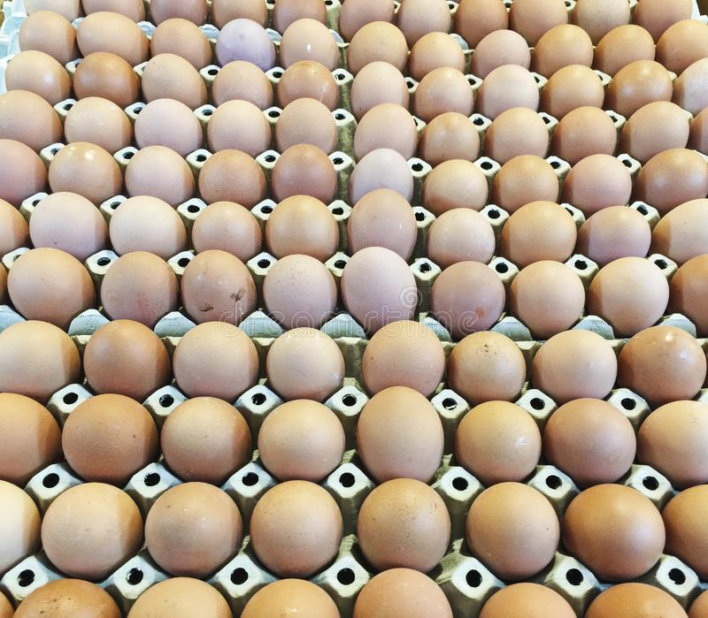 Cartons Of Eggs royalty free stock image