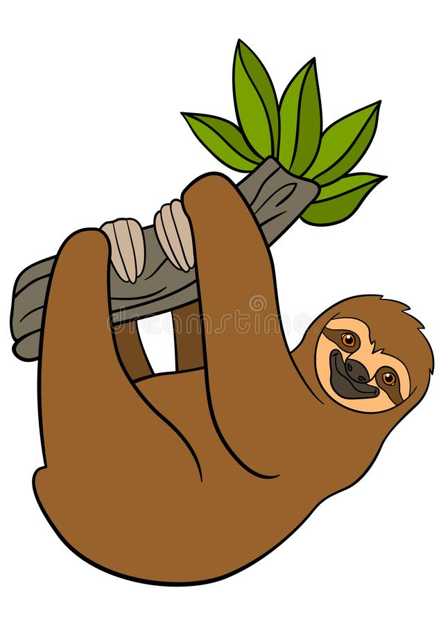 Cartoon animals. Cute lazy sloth hangs on the tree. Branch and smiles stock illustration