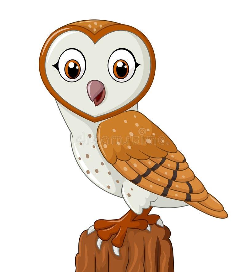Cartoon barn owl isolated on white background stock illustration