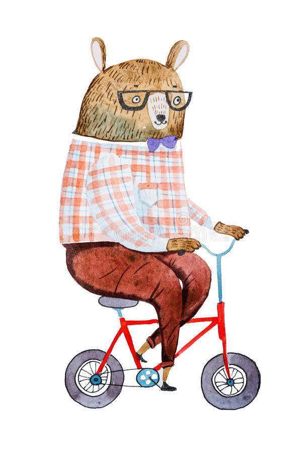 Cartoon bear dressed up in hipster clothes riding a bike drawn on white paper with watercolor technique.  vector illustration