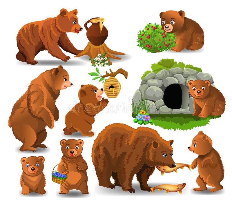 Cartoon bears doing different activities isolated on a white background. Cartoon bears doing different activities and eating their favorite food like honey vector illustration