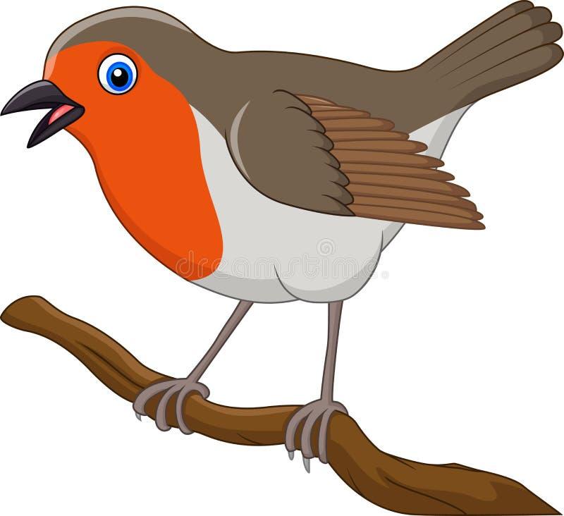Cartoon Beautiful Robin Bird Stock Vector - Illustration ...