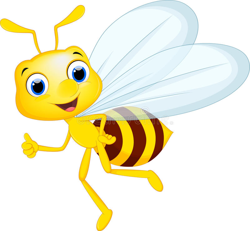Cartoon bee for you design. Illustration of Cartoon bee for you design royalty free illustration