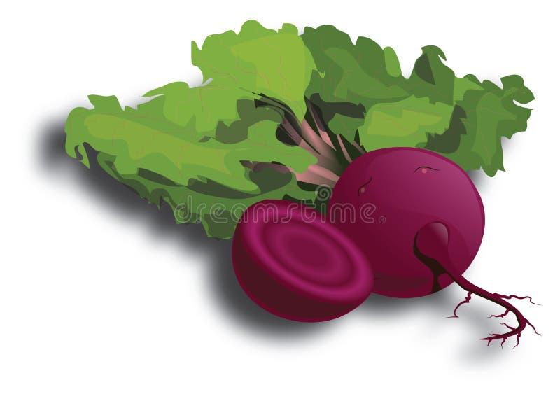 Cartoon Beetroot. Isolated on white stock illustration