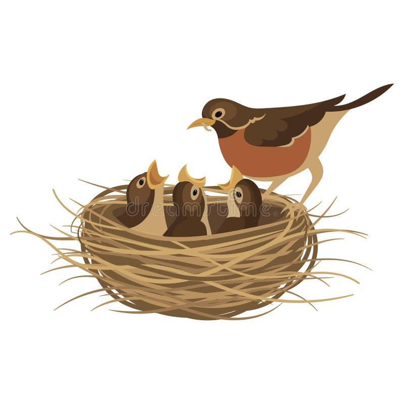 Free Cartoon Bird`s Nest With Chicks. Vector Illustration For Children. Springtime. Stock Photo - 157659760