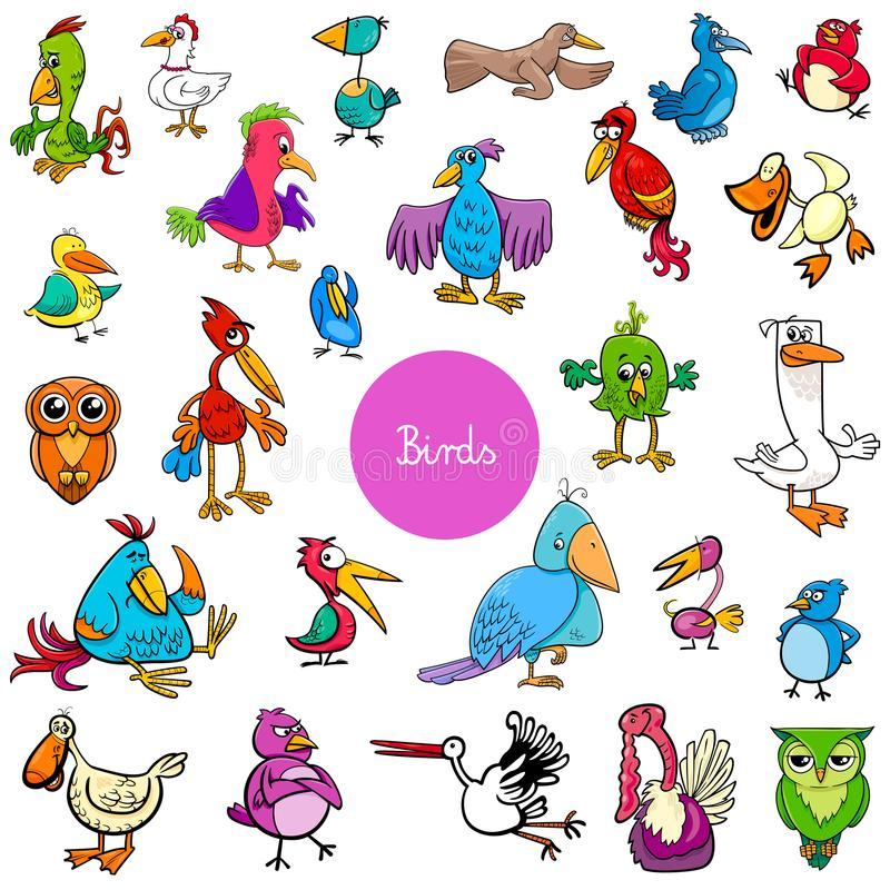 Cartoon birds animal characters big collection vector illustration