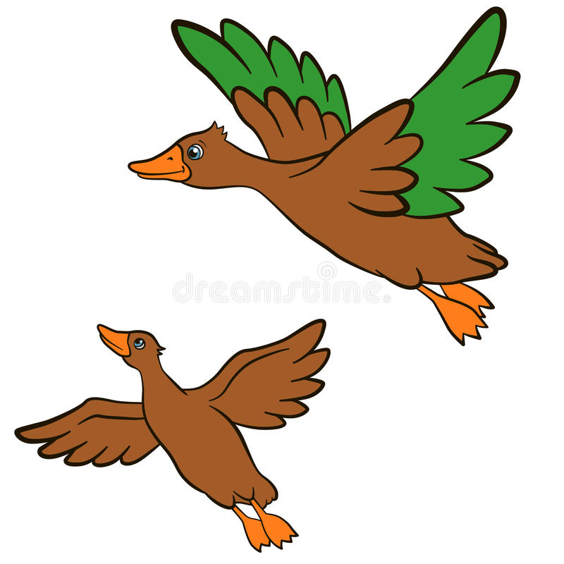 Cartoon birds for kids. Two little cute ducks flies and smiles. They are happy vector illustration