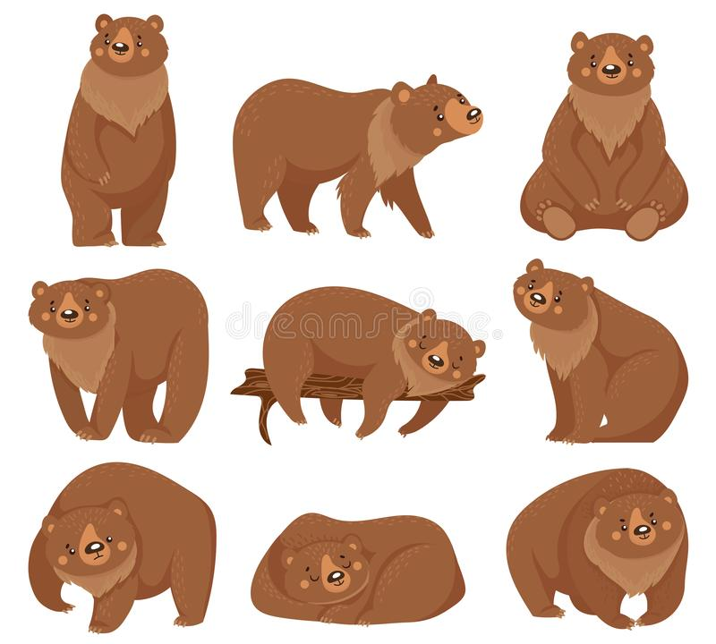 Free Cartoon Brown Bear. Grizzly Bears, Wild Nature Forest Predator Animals And Sitting Bear Isolated Vector Illustration Stock Image - 152208831