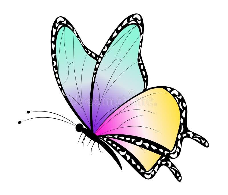 cartoon butterfly clip art stock vector illustration of cartoon rh dreamstime com