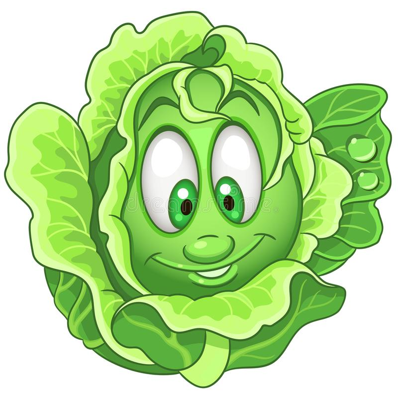 Cartoon Cabbage character vector illustration