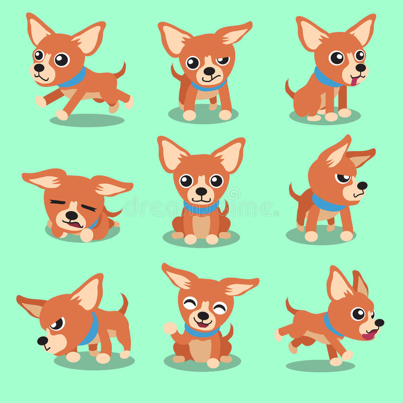 Cartoon character brown chihuahua dog poses. For design royalty free illustration