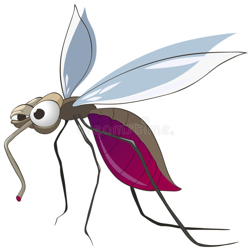 Cartoon Character Mosquito vector illustration