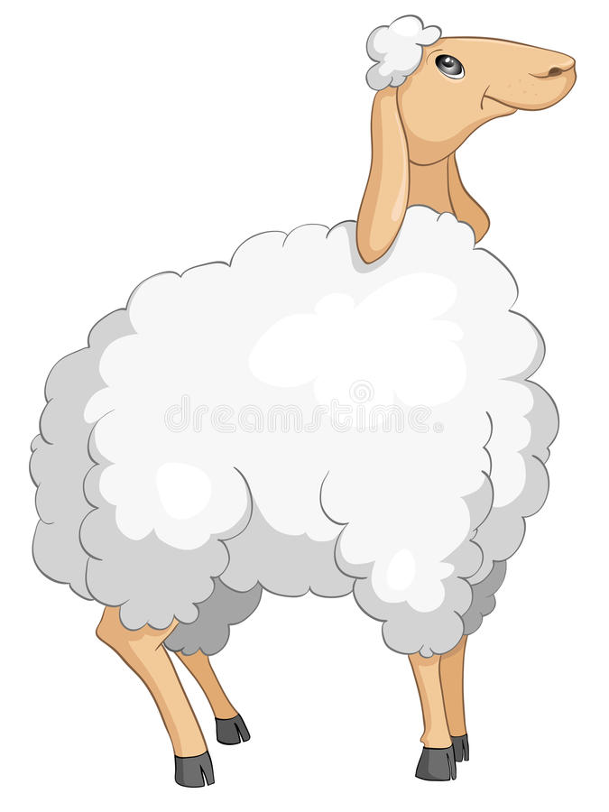 Cartoon Character Sheep vector illustration