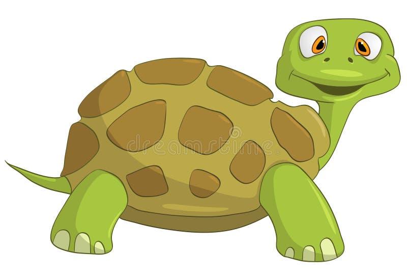 Cartoon Character Turtle stock illustration