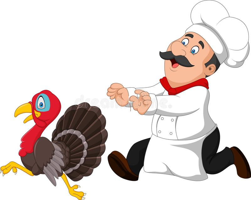 Cartoon chef trying to catch a turkey royalty free illustration