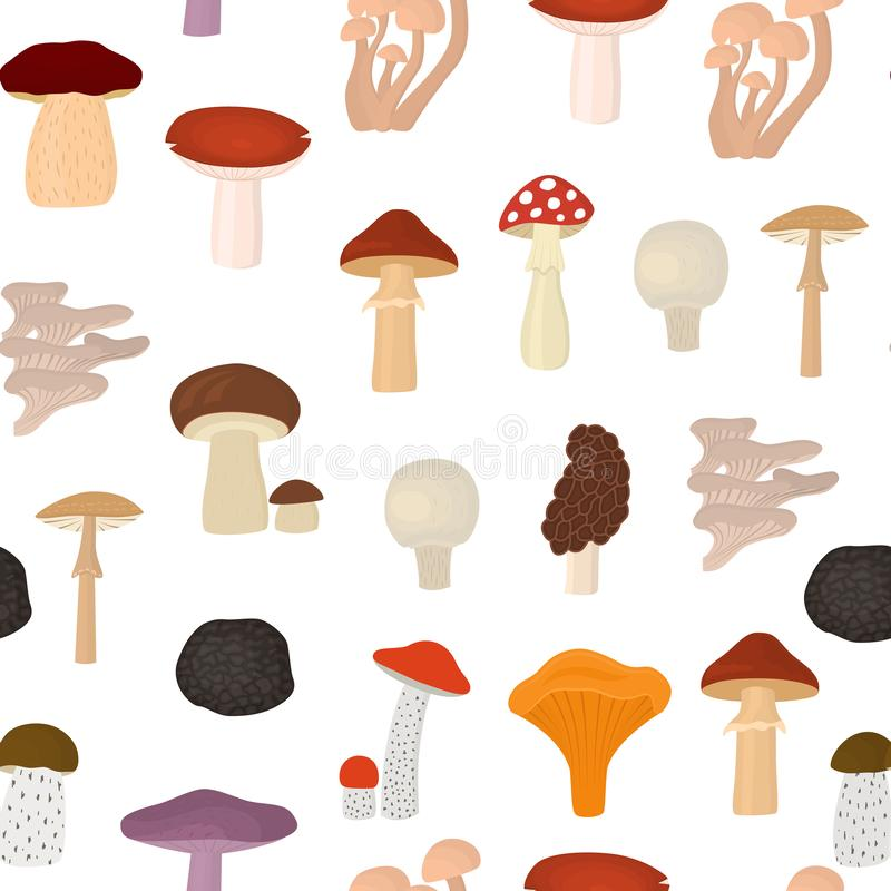 Cartoon Color Poisonous and Edible Mushrooms Seamless Pattern Background. Vector royalty free illustration