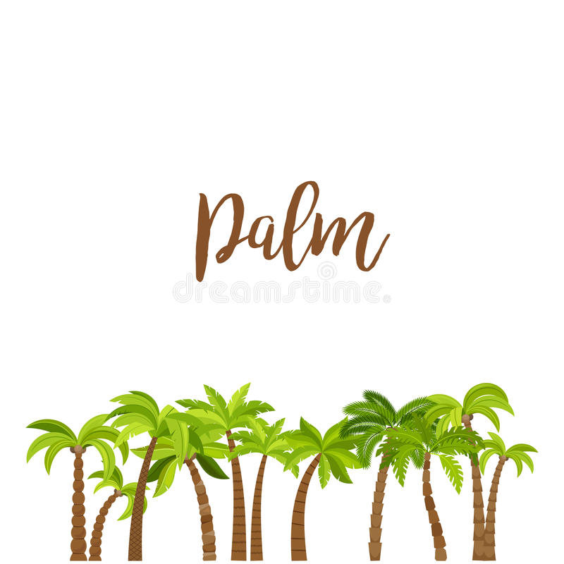 Cartoon colored palm trees forest vector illustration