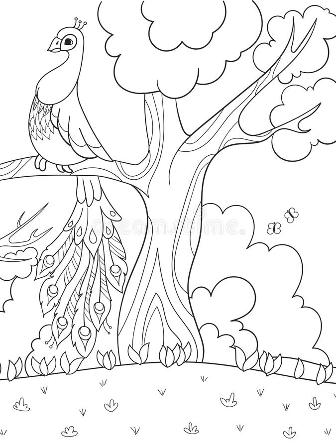 cartoon coloring for children a bird a feather of a bird or a peacock on a tree stock illustration illustration of painting mating 123311662 cartoon coloring for children a bird