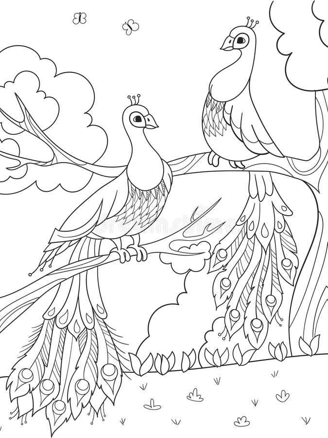 cartoon peacock stock illustrations 2 911 cartoon peacock stock illustrations vectors clipart dreamstime cartoon peacock stock illustrations 2