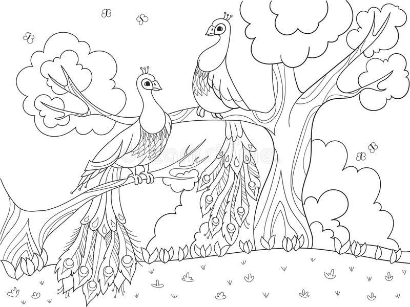 Cartoon coloring for children. A bird, a feather of a bird or a peacock on a tree. Couple in love. royalty free illustration