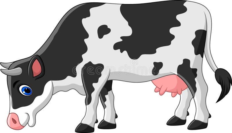 Cartoon cow isolated on white background stock illustration