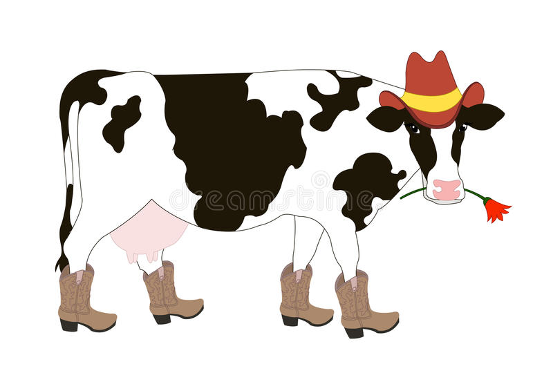 Cartoon cowboy cow. Wearing a hat and boots royalty free illustration