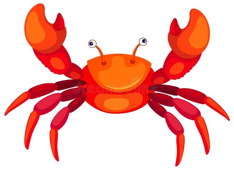 Download Cartoon crab stock vector. Image of drawing, clip, shape - 13023733