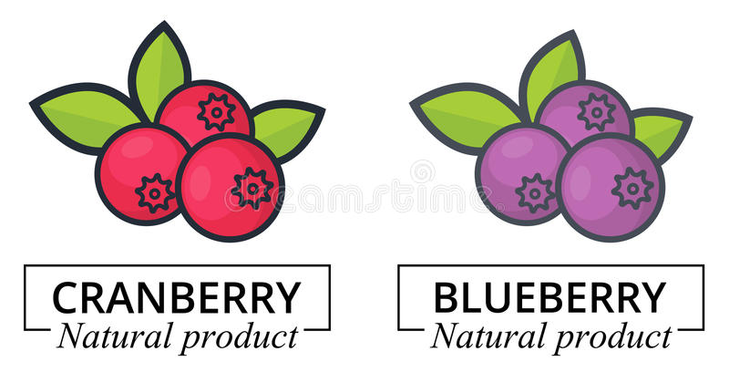 Cartoon cranberry and blueberry label vector illustration
