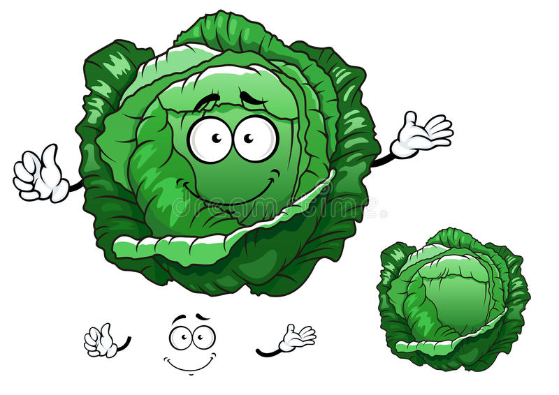 Cartoon crunchy cabbage vegetable character royalty free illustration