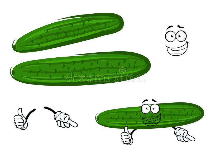 Cartoon crunchy green cucumber vegetable. Bright green crunchy juicy cucumber vegetable cartoon character giving thumb up sign, for agriculture harvest themes royalty free illustration