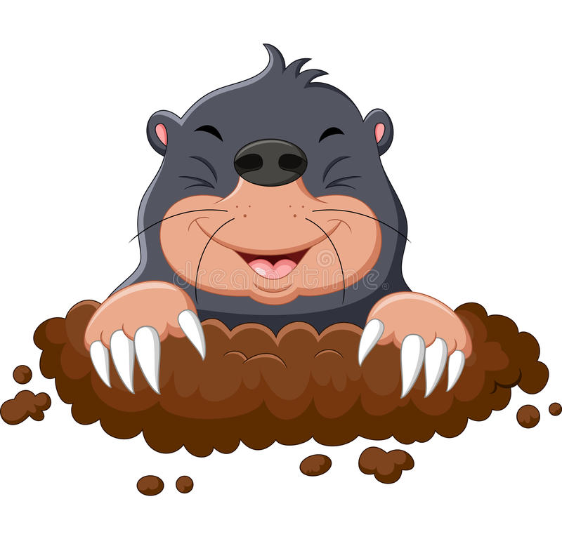 Cartoon cute mole. Illustration of Cartoon cute mole vector illustration