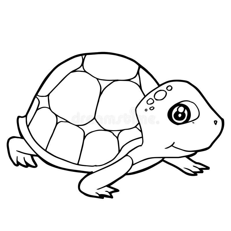 Cartoon Cute Turtle Coloring Page Vector Stock Vector Illustration